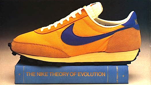 Nike LDV running shoes