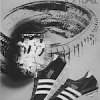"""adidas Triple Crown / MVP Baseball Shoes """"TAKE YOUR CHOICE FOR BASEBALL AND SOFTBALL"""""""