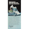 "Converse Chris Evert tennis shoes ""When you watch Chris Evert play, tennis, notice her converse shoes."""